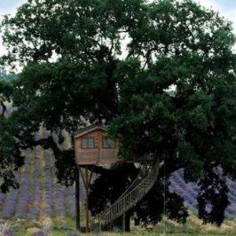 Weekend romantico vicino Roma casa sull'albero