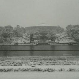 Neve a Roma: il laghetto dell'Eur