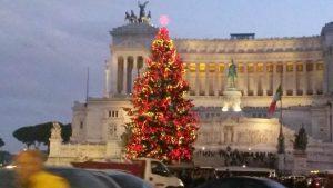 Gli alberi di Natale di Roma: l'albero di Piazza Venezia