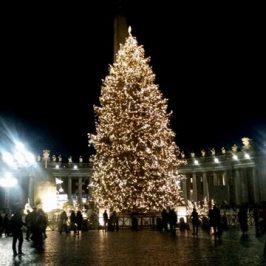 L'albero di piazza San Pietro